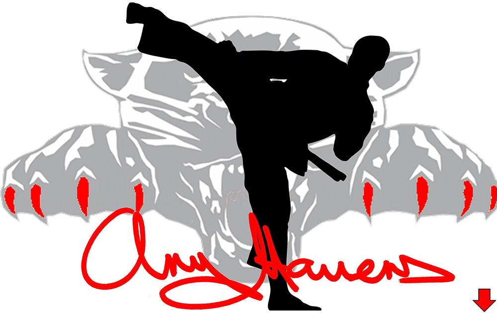 Chuldow Martial Arts Academies