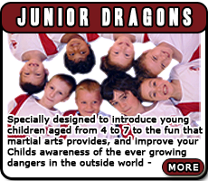 Courses for Junior Dragons (4-7)